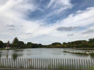 浮間公園の池